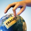Stock Photo: Fragile Earth