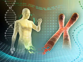 хромосома человека — Стоковое фото