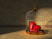 Heart in a cage — Stock Photo