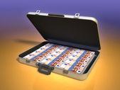 Money case — Stock Photo