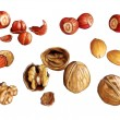 Walnuts, hazelnuts and almonds — Stock Photo