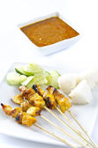 Delicious Asian Cuisine Chicken Satay — Stock Photo