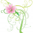 Mallow vector flower with abstract decor pink illustration isola - Stock Photo