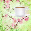 Pink sakura flowers on branches with coffee cup grunge backgrou — Stock Photo