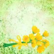 Yellow flowers with ribbon on grunge green watercolor background — Stock Photo #10358326