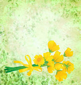 Yellow flowers with ribbon on grunge green watercolor background — Stock Photo