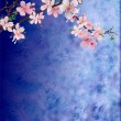 Pink cherry blossom branch on dark blue grunge background easte — Stock Photo