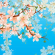Vector blossoming tree brunch in the garden on the blue sky back - Stock Photo