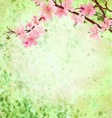 Pink cherry blossom branch on green grunge background easter ill — 图库照片