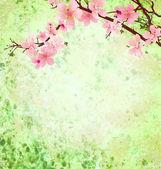 粉色樱花分支上绿色 grunge 背景复活节病 — 图库照片