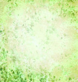 Light green textured grunge background — Stock Photo