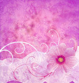 Pink grange background textured idea with ornamented pink cosmo — Stockfoto