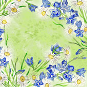 Bluebells and daisies watercolorsquare background — Stock Photo