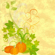 Autumn textured orange pumpkin background — Stock Photo