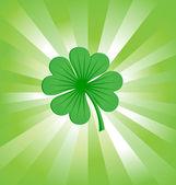 4 leaves luck clover green — Stock Photo