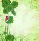 Clover with ladybug on green grunge texture background St. Patri — Stock Photo