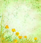 Light green illustration with yellow flowers — Stock Photo