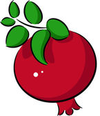 Pomegranate — Stock Vector