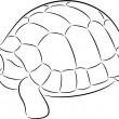 Stock Vector: Tortoise