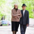 Senior couple lifestyle — Stock Photo #10475626