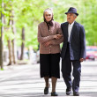 Senior couple lifestyle — Stock Photo #10475628