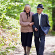 Senior couple lifestyle — Stock Photo #10475637