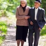 Senior couple lifestyle — Stock Photo #10475645