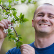 Agronomist checking cherry tree flowers - Foto de Stock  
