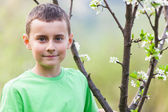 Boy in an orchard — Stock Photo