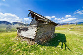 Abandoned barn in ruins — Stock Photo