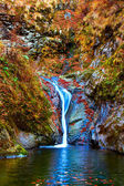 Waterfall — Stock Photo