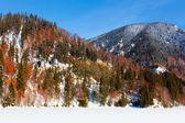 Frozen lake and mountains — Stock Photo