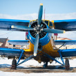 Vintage airplanes - Stock Photo