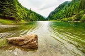 在罗马尼亚 petrimanu 湖 — 图库照片