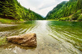 Lago di petrimanu in romania — Foto Stock