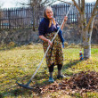 Senior woman spring cleaning in a walnut orchard — Stock Photo #9820281
