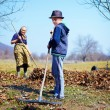 Family at work in an orchard — Stock Photo
