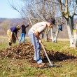 Family at work in an orchard — Stock Photo #9820386
