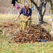 Stock Photo: Old woman working in the orchard