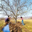 Mother and daughter working in an orchard - Stock Photo