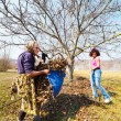 Foto de Stock  : Mother and daughter working in an orchard