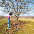 Young woman with a rake in an orchard — Stock fotografie