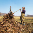 Senior woman with a rake — Stock Photo #9823702