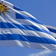 Stock Photo: Uruguay flag close up