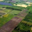 Aerial view of agriculture green fields - Stock Photo
