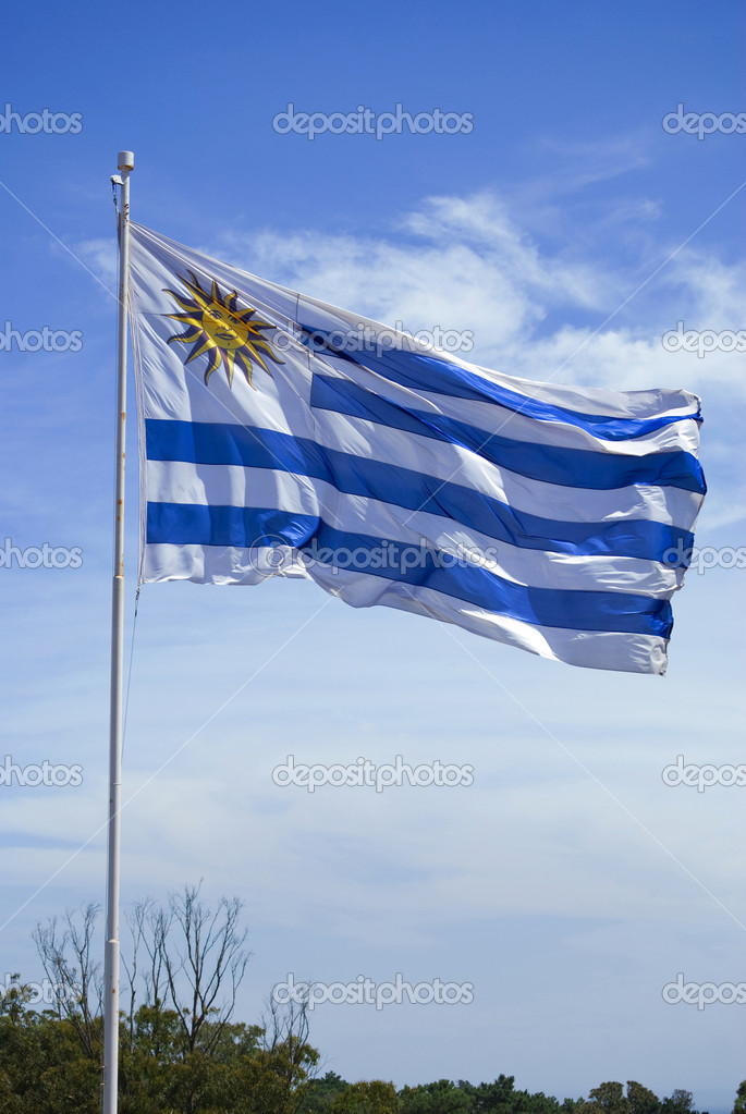 Uruguay flag flames over a blue clear sky background.  Stock Photo #7967309