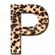 Leopard alphabet — Stock Photo