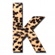 Leopard alphabet — Stock Photo #9358321