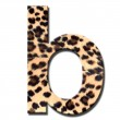 Leopard alphabet — Stock Photo #9358394