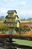 庭の黄色の巣箱 — ストック写真